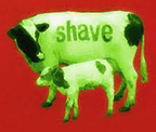 Shave Farm Artists logo